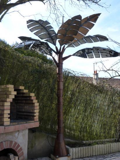 Palmier d'argenteuil*